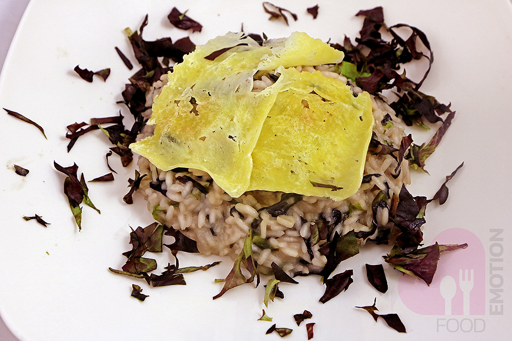 Risotto with red chicory and formagella